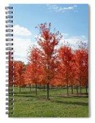 Scarlet Formation Spiral Notebook
