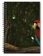 Scarlet Macaw Profile Spiral Notebook