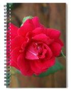 Scarlet... Spiral Notebook