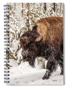 Scary Bison Spiral Notebook