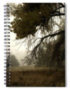 Scary Trees Spiral Notebook