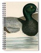 Scaup Duck Spiral Notebook