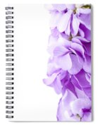 Scented Stocks Spiral Notebook