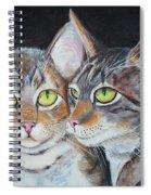 Scheming Cats Spiral Notebook