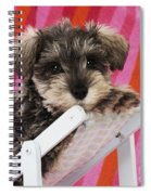 Schnauzer Puppy Looking Over Top Spiral Notebook