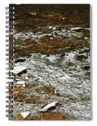 Schoharie Creek Lexington New York Catskill Mountains Spiral Notebook