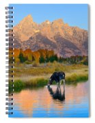 Schwabacher Morning Light  Spiral Notebook