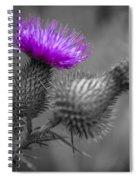 Scotland Calls 1 Spiral Notebook