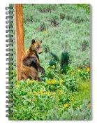 Scratch That Itch Spiral Notebook