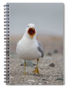 Screaming Seagull Spiral Notebook