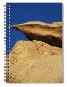 Sculpted Rock Spiral Notebook
