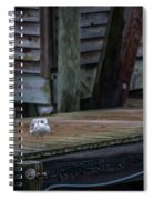 Sea Birds Dockside Spiral Notebook