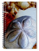 Sea Biscuit Spiral Notebook