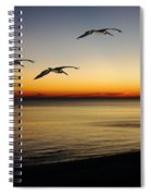 Sea Cruisers Spiral Notebook