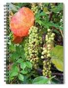 Sea Grapes And Poison Ivy Spiral Notebook