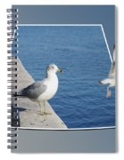 Sea Gull Away Out Of Bounds Spiral Notebook