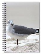 Sea Gull Spiral Notebook