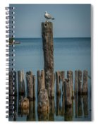 Sea Gull On A Piling Spiral Notebook