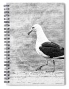 Sea Gull On Wharf Patrol Spiral Notebook