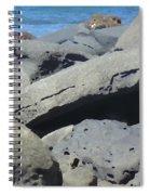 Sea Life 3 Spiral Notebook