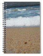 Sea Life Spiral Notebook