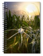 Sea Lily Spiral Notebook