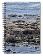 Sea Lion Resort Spiral Notebook