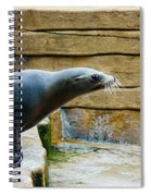 Sea Lion Side View Spiral Notebook