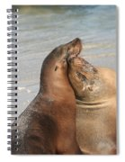 Sea Lions In Love Spiral Notebook
