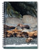Sea Lions On The Sea Shore Spiral Notebook