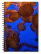 Sea Nettle Jellyfish Spiral Notebook