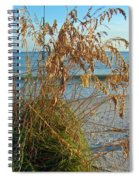 Sea Oats 1 Spiral Notebook