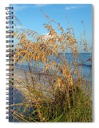 Sea Oats 2 Spiral Notebook