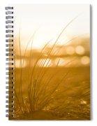 Sea Oats Sunset Spiral Notebook
