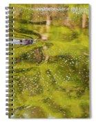 Sea Of Green Spiral Notebook