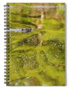 Sea Of Green Square Spiral Notebook