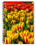 Sea Of Tulips Spiral Notebook