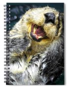 Sea Otter  Spiral Notebook