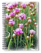 Sea Pinks Spiral Notebook