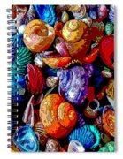 Sea Shell Abstract Spiral Notebook