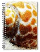 Sea Shell Beach Painting Art Spiral Notebook