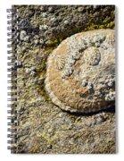 Sea Shell Rock Spiral Notebook