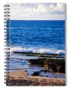 Sea Shelves Spiral Notebook