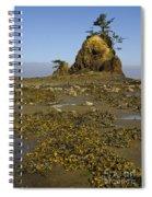 Sea Stack Spiral Notebook