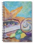Sea Star-abalone-snail Shell Spiral Notebook