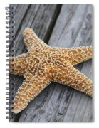 Sea Star On Deck Spiral Notebook