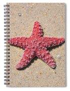 Sea Star - Red Spiral Notebook