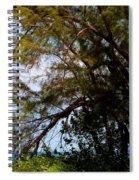Sea Through Trees Spiral Notebook