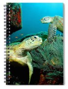 Sea Turtle Oil On Canvas Spiral Notebook