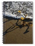Sea Weed And A Wave Spiral Notebook